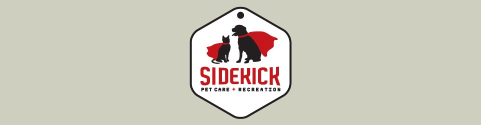 Sidekick Pet Care + Recreation, LLC | Austin, TX Pet Sitter + Dog Walker